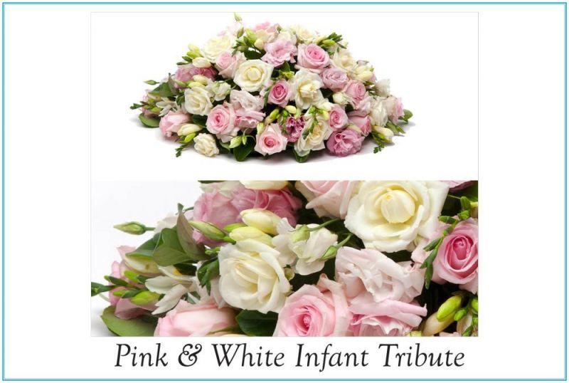 1-St-Nicodemus-Coffin--Flower-Catalogue-v2-33