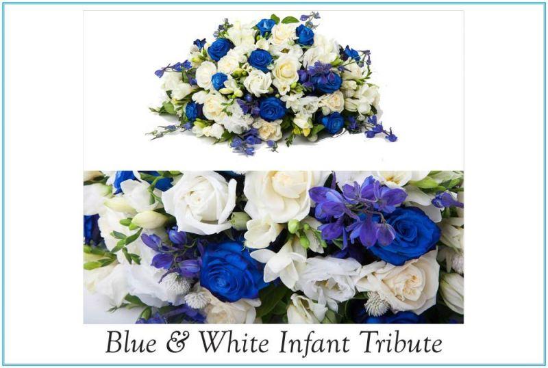 1-St-Nicodemus-Coffin--Flower-Catalogue-v2-34