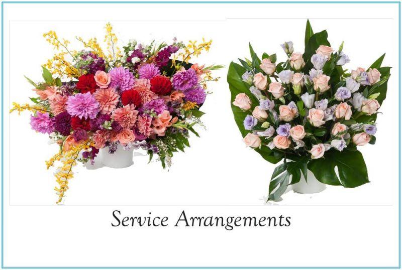 1-St-Nicodemus-Coffin--Flower-Catalogue-v2-41